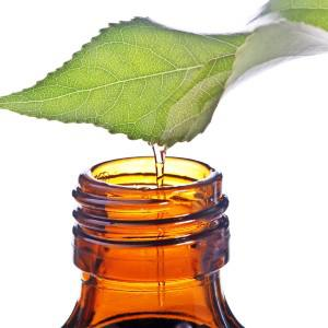 drop-of-essential-oil-of-a-leaf.jpg